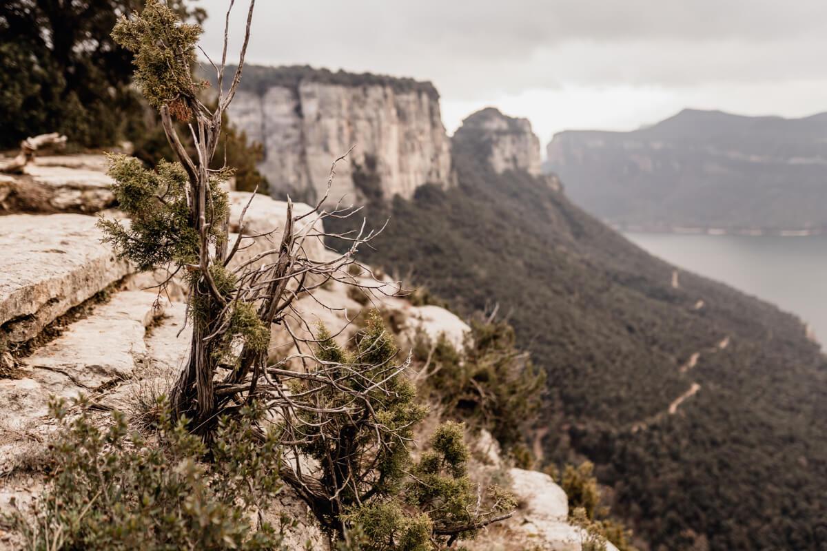 Boda íntima montaña Barcelona Cataluña